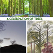 A Celebration of Trees